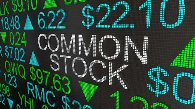 Biasa (Common Stock)
